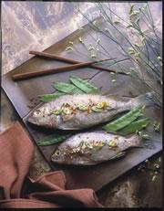 Grilled Oriental Spot or Croaker