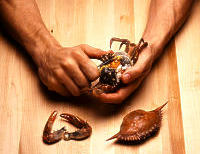 Photo depicting step three of cracking into a crab.